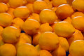 Lemons on display at market Royalty Free Stock Photo