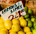 Lemons and Limes Two for One Royalty Free Stock Images
