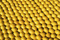 Lemons rows of close up view Royalty Free Stock Photo