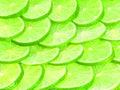 Lemons slice circle use for on background Stock Photos