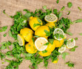 Lemons - sliced and full with green salad on canvas - top view Royalty Free Stock Photo