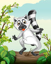 A lemur in a green nature illustration of Stock Photography