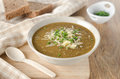 Lentil soup with cheese and green onions Royalty Free Stock Photo
