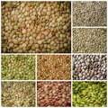 Lentils healthy food collage various kind of Stock Photo
