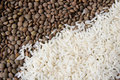 Lentils and rice background Royalty Free Stock Photography