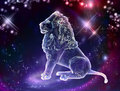 Leo lion is the king of animals the constellation of is a sign of the leaders a strong spirit strong body strong will Royalty Free Stock Image