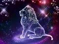 Leo Lion Royalty Free Stock Photo