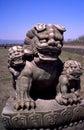 Leo statuary. Royalty Free Stock Photo