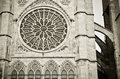 Leon cathedral rosette of the gothic in in spain Stock Image
