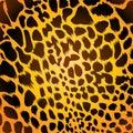 Leopard fur Royalty Free Stock Photo