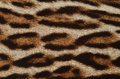 Leopard fur texture background of Royalty Free Stock Image