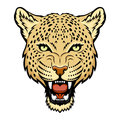 Leopard a head logo this is vector illustration ideal for a mascot and tattoo or t shirt graphic Stock Photo