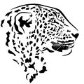 Leopard head profile design black and white animal outline Royalty Free Stock Image