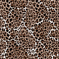 Leopard Or Jaguar Seamless Pat...