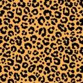 Leopard pattern texture repeating seamless orange black fur print skin Royalty Free Stock Photo