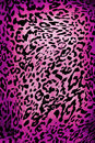 Leopard pattern wild animal skin material texture Royalty Free Stock Photos
