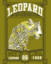 Leopard poster Royalty Free Stock Images