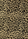 Leopard print fabric texture Royalty Free Stock Photo