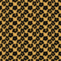 Leopard Print Pattern Stock Photography