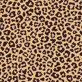 Leopard seamless pattern, beige brown color