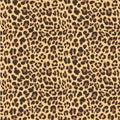 Leopard Seamless Pattern Desig...