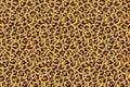 Leopard seamless print. Cheetah jaguar exotic animal skin pattern, luxury fashion wallpaper. Vector textile design