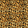 Leopard Skin Animal Print Seam...