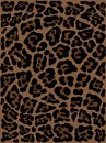 Leopard skin hand drawn. animal print drawing. Seamless Pattern.