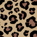 Leopard Skin Hand Drawn. Anima...