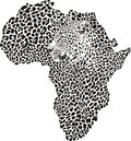 Leopard skin and head in silhouette africa illustration of symbol as a Royalty Free Stock Image