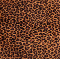 Leopard Spots Fabric Pattern Royalty Free Stock Images