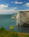 Les pinacles Swanage Dorset Photos libres de droits