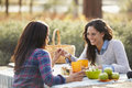 Lesbian couple holding hands across a picnic table Royalty Free Stock Photo