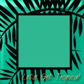 Lets get tropical frame Royalty Free Stock Photography
