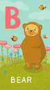 Letter b animal abc animals bear in alphabet card Royalty Free Stock Image