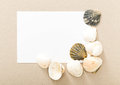 Letter from the beach. Seashells Royalty Free Stock Photo
