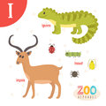 Letter I. Cute animals. Funny cartoon animals in vector.