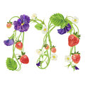 Letter A Strawberry font. Red Berry lettering alphabet. Fruits ABC