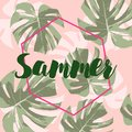 Lettering hello summer with leaves palm on pink background