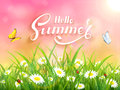 Lettering Hello Summer on pink nature background