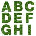 Letters a b c d e f g h i made of green grass isolated on white Royalty Free Stock Images