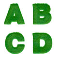 Letters a b c d made of green grass isolated on white alphabet Stock Photo