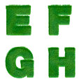 Letters e f g h made of green grass isolated on white alphabet Stock Images