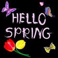Letters hello spring wiht butterfly