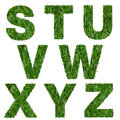Letters s t u v w x y z made of green grass isolated on white Royalty Free Stock Image