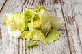 Lettuce cut surrounded by rustic background Royalty Free Stock Images