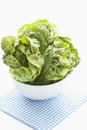 Lettuce hearts Stock Photos