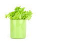 Lettuce leaves in a cup Royalty Free Stock Image