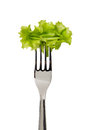 Lettuce leaves on fork isolated white background Royalty Free Stock Photography