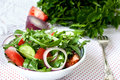 Lettuce mix of rukolly, tomatoes, cucumbers with rings of red on Royalty Free Stock Photo
